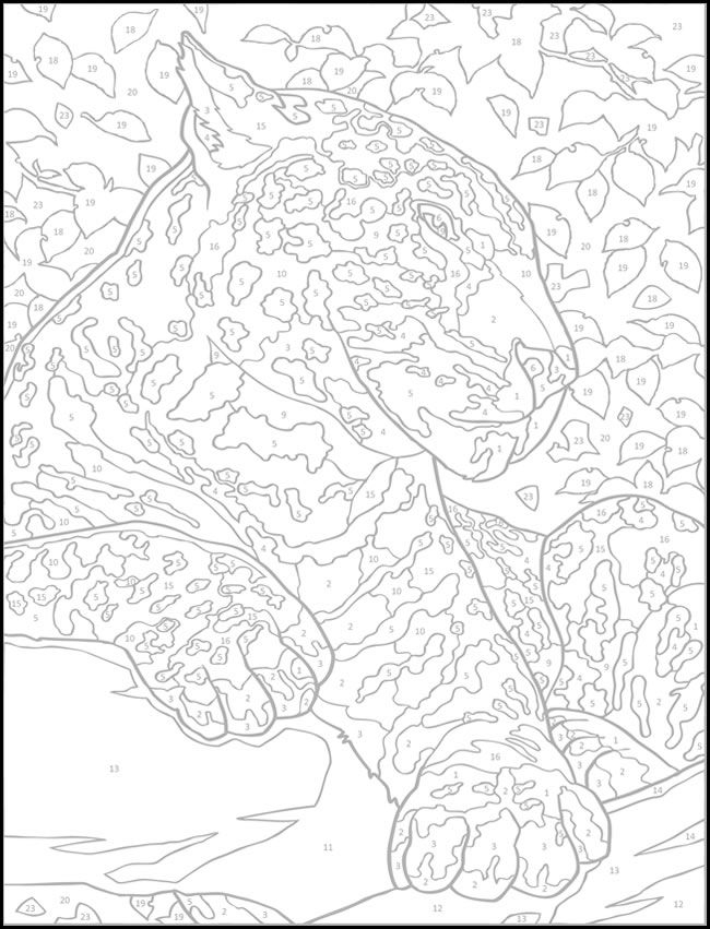 Adult Color By Number Coloring Pages Coloring Home
