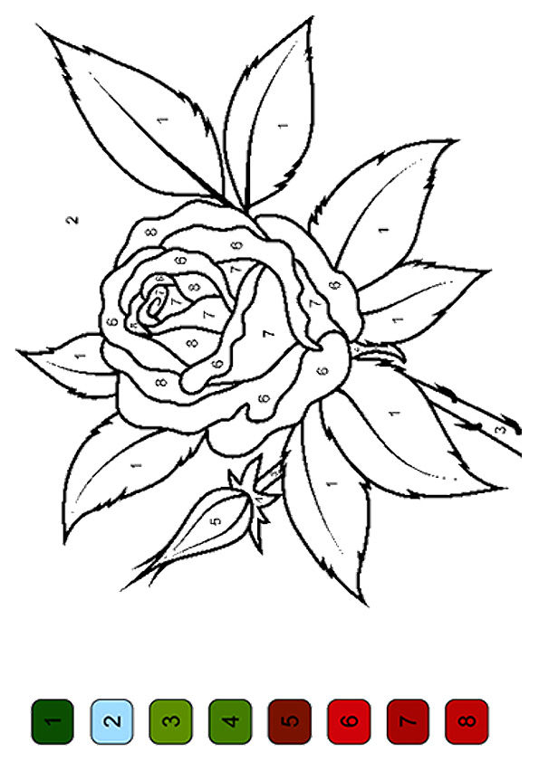 Free Printable Rose Color By Number Coloring Picture
