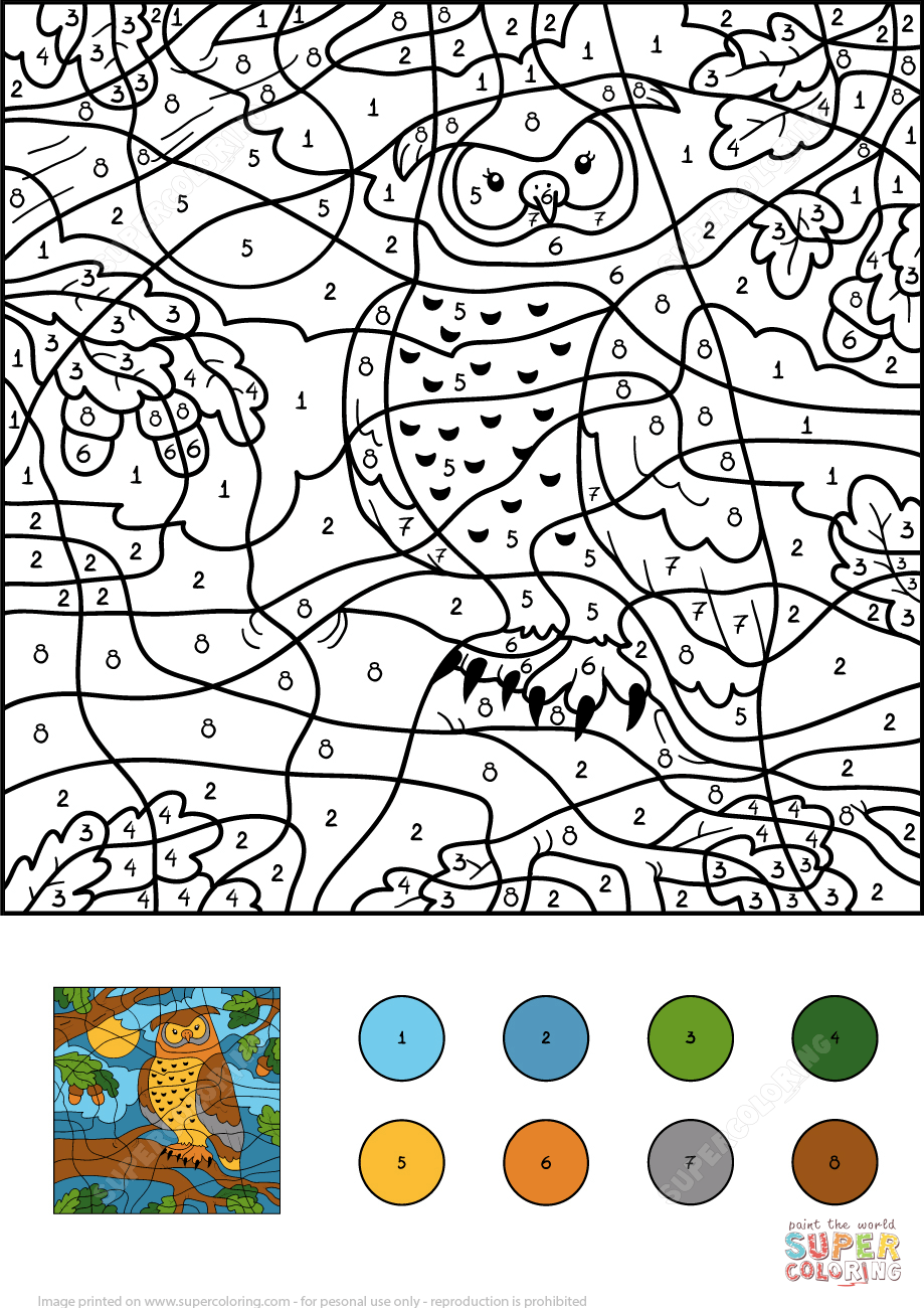 Owl Color By Number Free Printable Coloring Pages