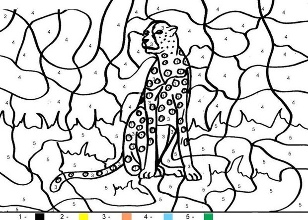Tiger Coloring Pages Hellokids