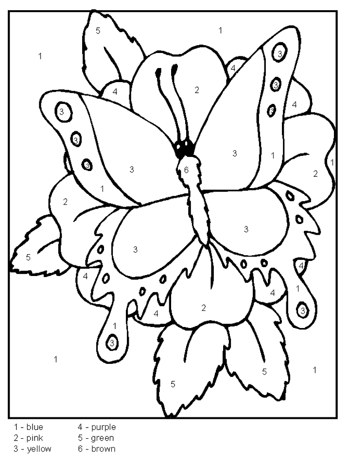 Color By Number Butterfly Coloring Home
