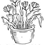 Color By Number Flower Coloring Pages At GetColorings