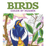 Creative Haven Birds Color By Number Coloring Book By