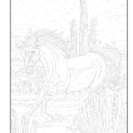 Dover Publications On Amazon Creative Haven Horses Color