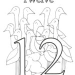 Number 12 Coloring Page PDF With Images Coloring Pages