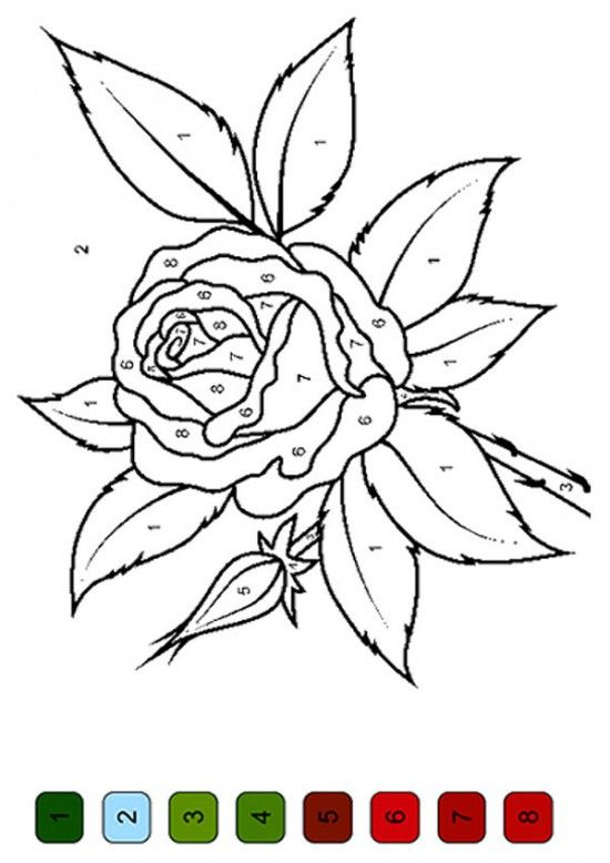 The Color By Number Flower Coloring Pages 550x778 Picture