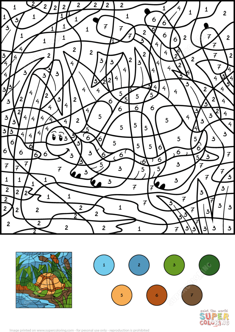 Turtle In Pond Color By Number Free Printable Coloring Pages