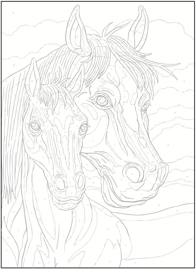 Welcome To Dover Publications Creative Haven Horses