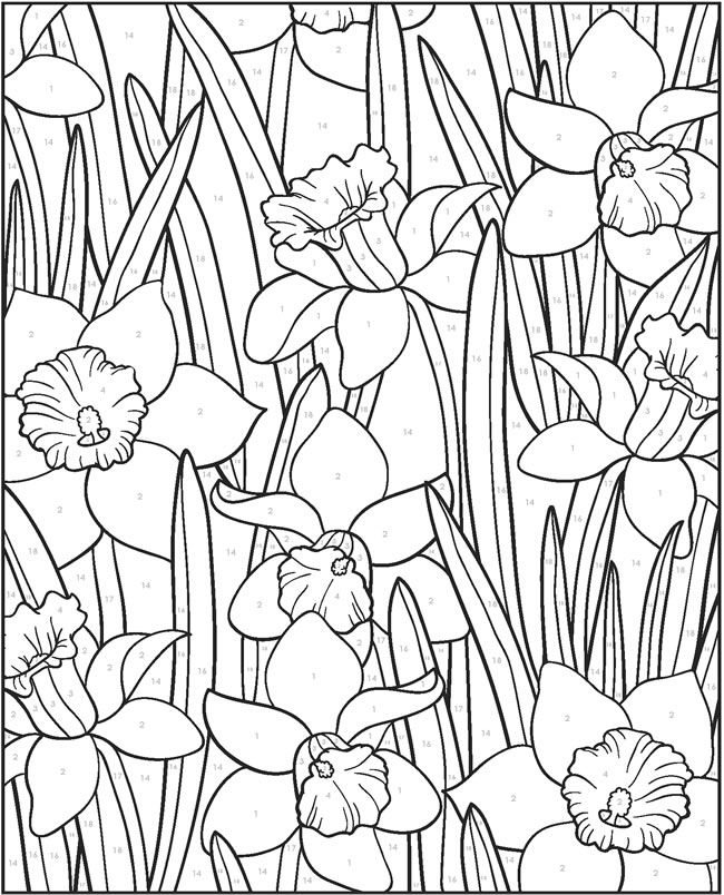 Welcome To Dover Publications Flower Drawing Design